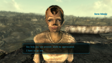 Distorted Face Overhaul - Fallout 3 Edition