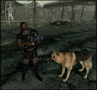 dogmeat1