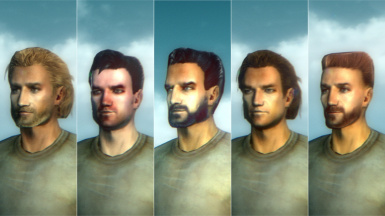 Budong's New Face Presets