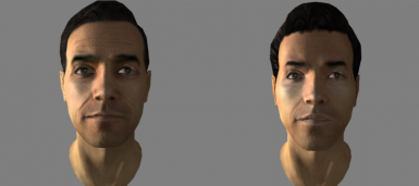 James Jr Male Face Preset