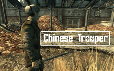 Chinese Trooper
