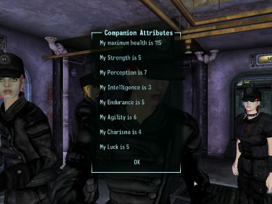 New Companion Attribute Check