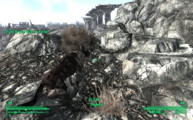 Dogmeat on the catwalk