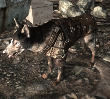 Dogmeat Leather Armor