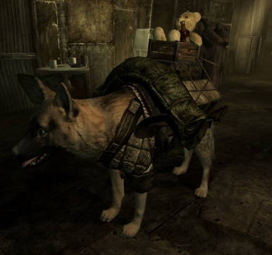 Dog with armor AND packs