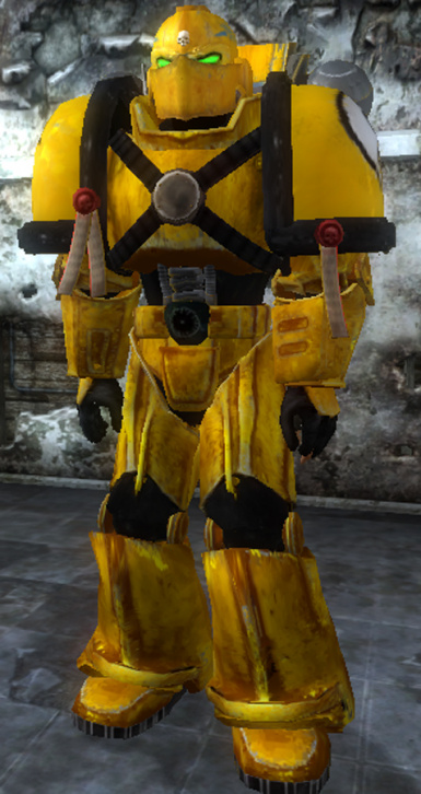 Imperial Fist Veteran