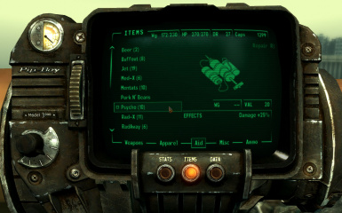 hdr pipboy
