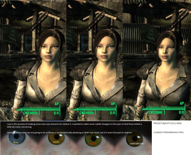 fallout 3 project beauty Capital wasteland | fallout 3 remake | metro & quest pre-alpha gameplay  taken with projects like fallout 4 new vegas, plus things like an.