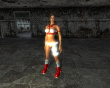 FO3-Oblivion-Conversions for Exnems Body