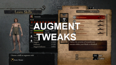 Augmentation Tweaks