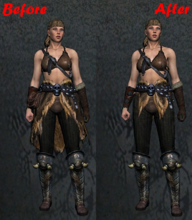 Shorter Hide Armor