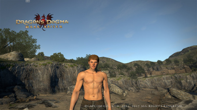 Cleaner Male Body Textures