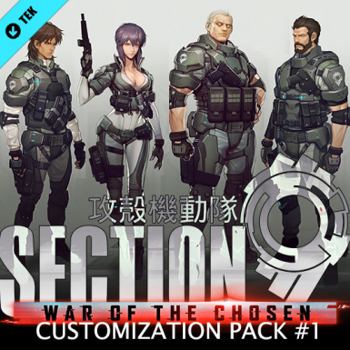 SECTION9 CUSTOMIZATION PACK 1 (WOTC)