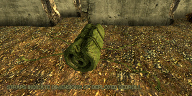 Bedroll Placer Object