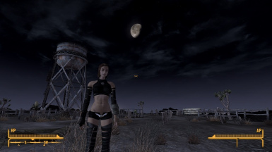 TYPE3 Persona and Secret outfits for New Vegas
