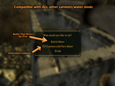 Compatible with other water and canteen mods