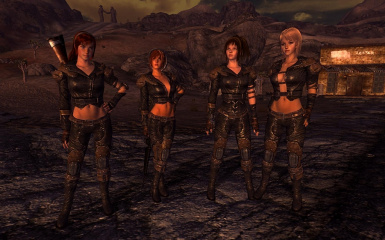 New Vegas Type3 Leather Armors