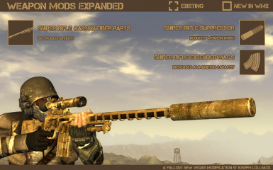 Weapon Mods Expanded - WMX