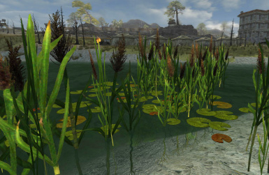 Reeds and lilypads in v2do8
