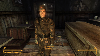 red partisans at fallout new vegas mods and community