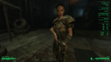 Fomod works for Fallout 3 Third Person only must use RH ironsights first person meshes