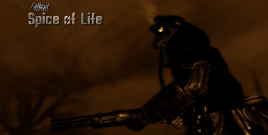 Spice of Life - Variety Armor and Clothing Robert Breeze Type3