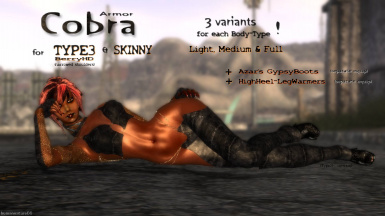 COBRA for TYPE3 and SKINNY