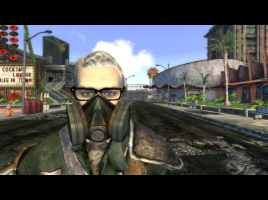 Fallout New Vegas Wear Glasses And Mask