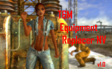 T6M Equipment Replacer NV