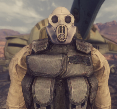 Stalker with PBF gas mask