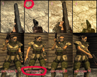 Best options for Weapon Animation Replacer