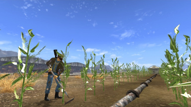 How not to Tend to Crops