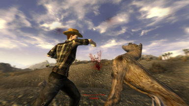 Bare-fisted fighting for New Vegas