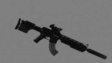 Marksman Carbine with mods