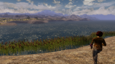 Natural Waters For New Vegas