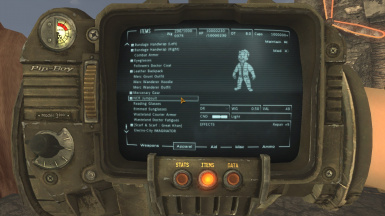 Pipboy view