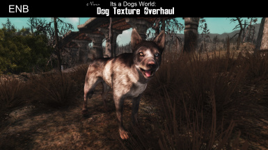 Its a Dogs World - Dog Texture Overhaul