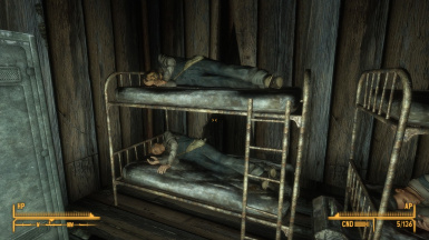 Real Bunk Beds