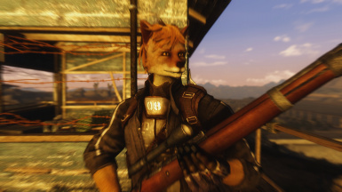 Vulpine Race Fox Race At Fallout New Vegas Mods And Community