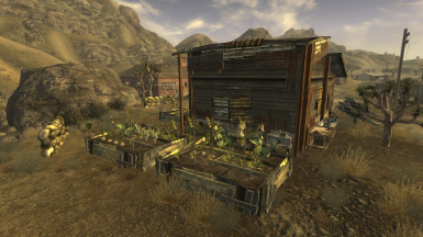 Victor's Shack - Player Home