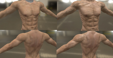High Resolution Male Body Textures