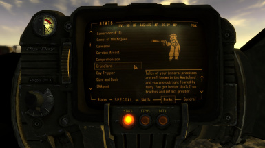 Crimelord Pipboy