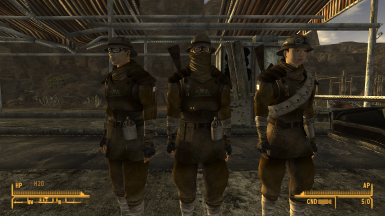 NCR Butterseed Armor Retexture