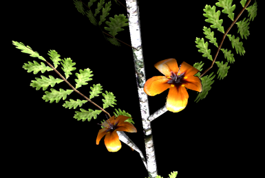Close up of Flowers N Leaves -the black edge doesnt show in game it is GECKs fault-