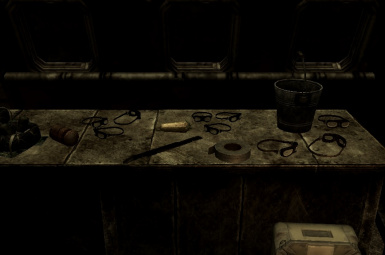 Rangers and Riots - NightVision for New Vegas.