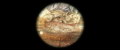 Ultrawide 21 9 Sniper Scopes