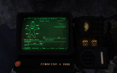 Pip-Boy 2000 Mk VI - Brown Retexture