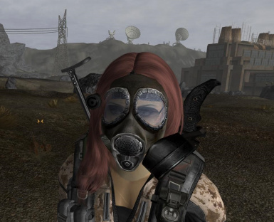 Transparent glass for xm40 (Gas Masks of the World)