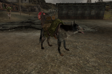 Dogmeat (Assets provided by pintocat)