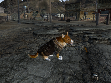 Corgi (Assets provided by pintocat & Nivea)